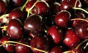 出售山东大樱桃(品种有红灯、美早、先锋、黄蜜)