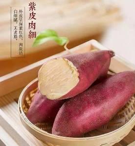 板栗紅薯金秋十月上市