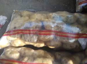 河北玉田縣優質荷蘭馬鈴薯 早大白馬鈴薯 土豆基地 土豆供應商